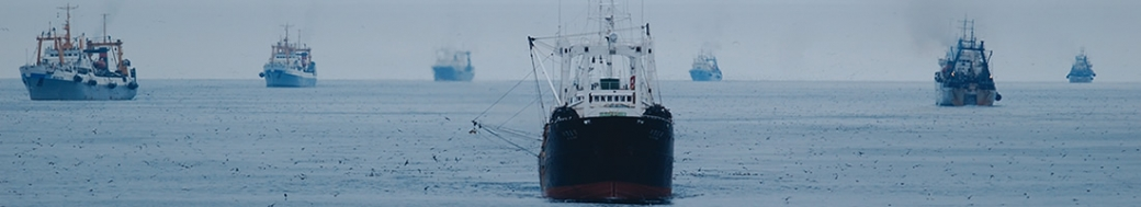 Bering Sea commercial fishing fleet