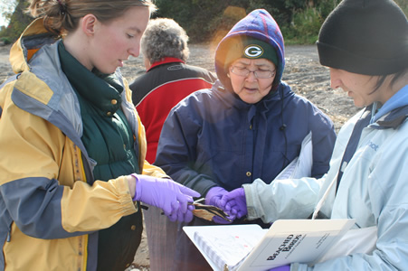 Community volunteers working with shorebird biologist
