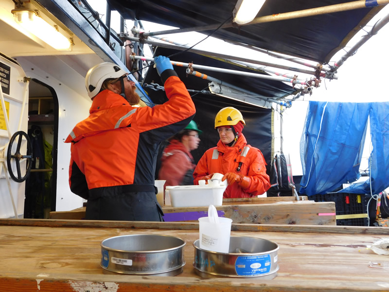 researchers on deck examining oceanographic samples